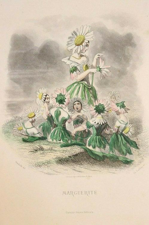 Grandville Fleurs animées 1867 Estampe aquarellée femme fleur Marguerite Fée