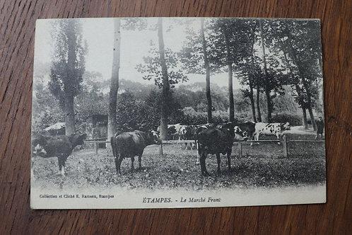 CPA Etampes Essonne Vaches Le marché Franc