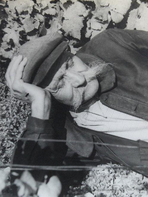 Henri Gros (Photographe). La sieste dans les vignes. Vendanges en Bourgogne