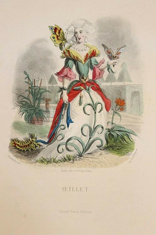 estampe originale aquarellée Grandville Fleurs animées 1867 Femme Fleur Œillet