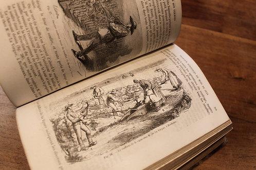 Barral. Le Bon Fermier ou Aide-Mémoire du cultivateur (1876). Vie rustique
