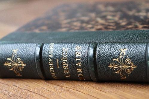1879 L'espèce humaine Quatrefages sciences Anthropologie préhistoire