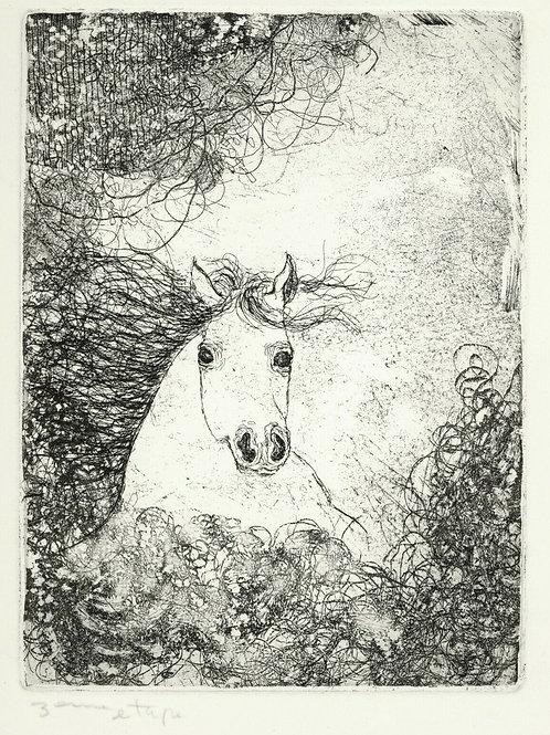 Superbe estampe originale moderne art contemporain cheval horse engraving