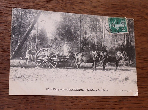 CPA Arcachon Attelage Landais Gironde Chevaux