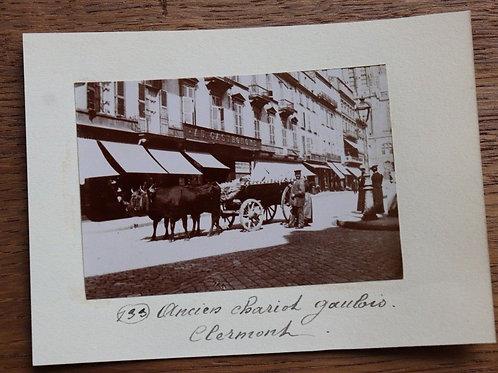Photographie ancienne 1899 Puy-De-Dôme Clermont-Ferrand Chariot Gaulois Commerce