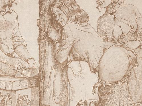 Joseph Farrel. BDSM. Bondage Domination Sado-Masochisme. Planche d'album de 1977