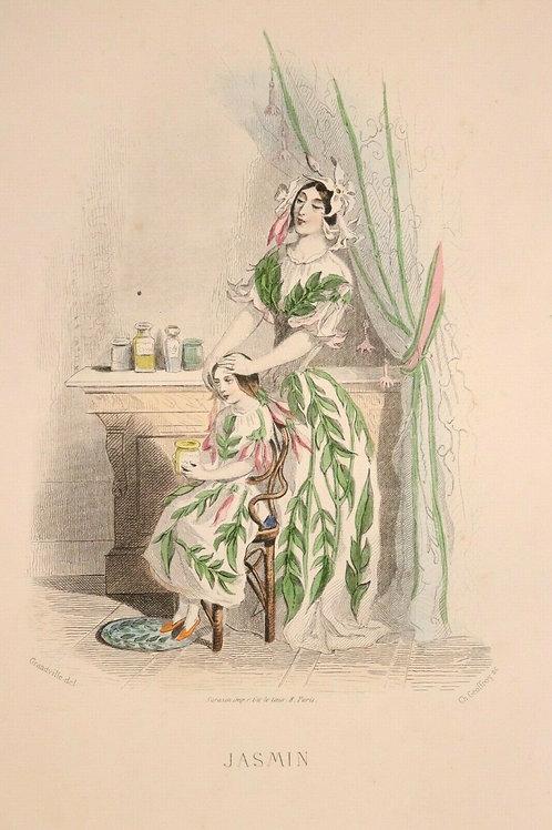 Grandville Fleurs animées 1867 Estampe aquarellée Femme fleur nature Fée Jasmin