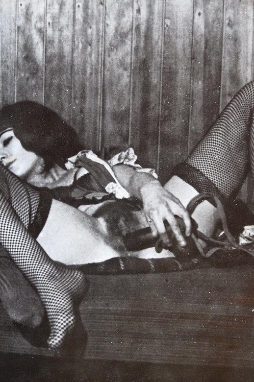 Le Journal intime de Mademoiselle Hermance. 1965. Un clandestin rare