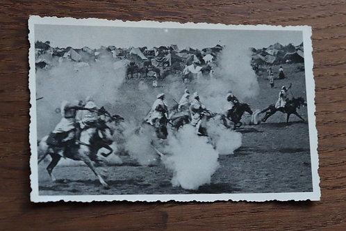 Photo ancienne vers 1930 Maroc Fantasia équitation