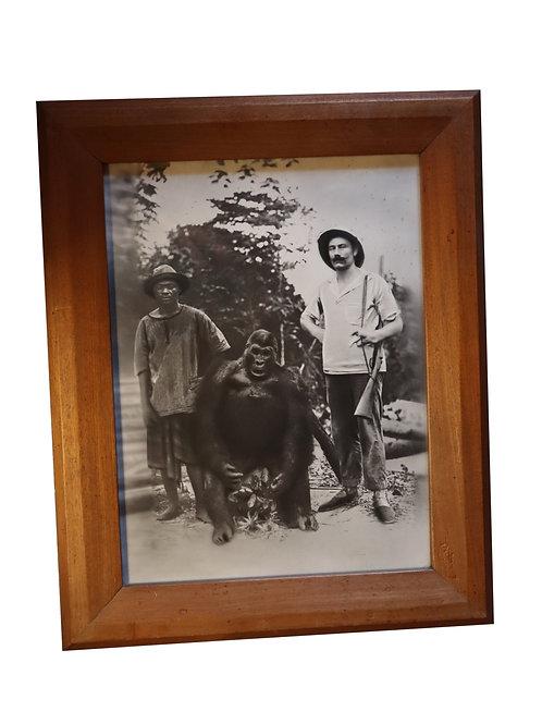 Exceptionnelle photographie de 1928. Gorille solitaire trophée (chasse) au Gabon