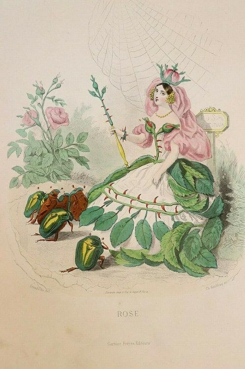 Fleurs animées 1867 Estampe aquarellée gommée époque Femme Fleur Rose