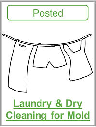 Laundry and dry cleaning for mold.png