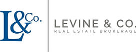 Levine4.jpg