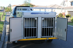 Custom-Dog-trailer-6.jpg