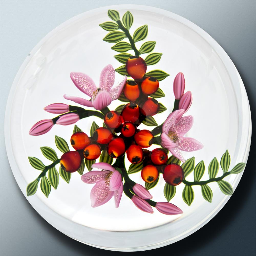 Dichroic Berry Kaleidoscope