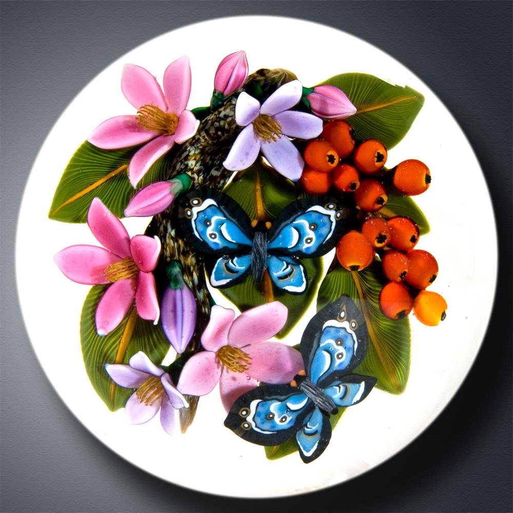 Tropical Butterflies II