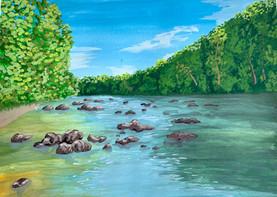 Rivanna River, Charlottesville VA
