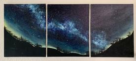 3 panel acrylic painting