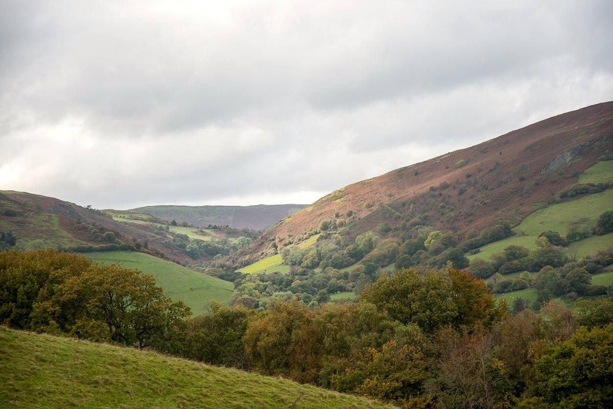 Yoga & Walking week, Rural Wales