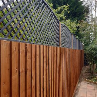 close-board-fence-trellis-1