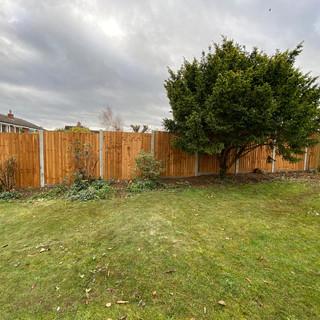 close-board-fence-8