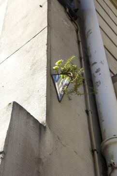 StreetArt_04.jpg