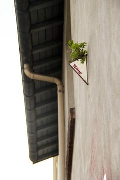StreetArt_73.jpg