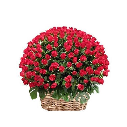 Canasta con 200 rosas