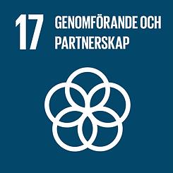 17_genomforande_och_partnerskap.png