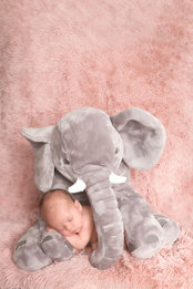 baby pictures, newborn photography-39.jp