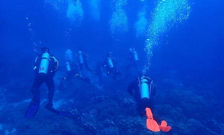 diving solution.JPG