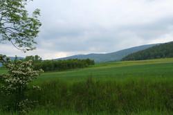 Eulengebirge