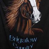 Brigalow Country logo.jpg