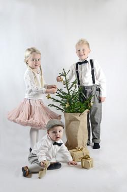 Hauge julakort 2014