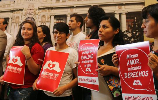 Activistas de la campaña Unión civil ya en el congreso