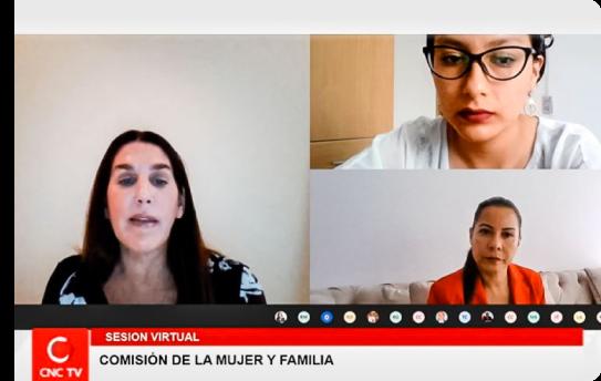 Comisión mujer y familia del congreso