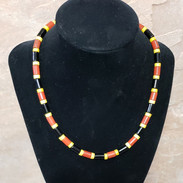 Sonoran coral snake