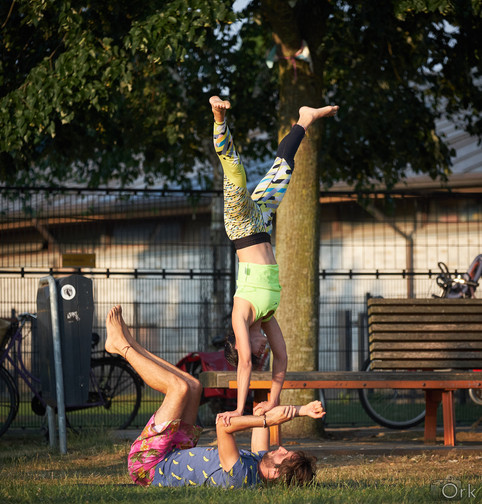 Handstand on forearms