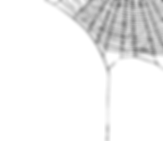 web-spider-gothickyrachan.png