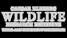 CKWRI Logo white -01.png