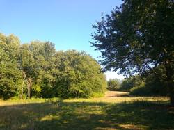 Vue sur le parc du Domaine de la Gra