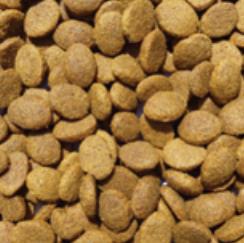 LDP: Large Breed - Salmon and Potato WD (15kg)