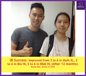 ib student successful results