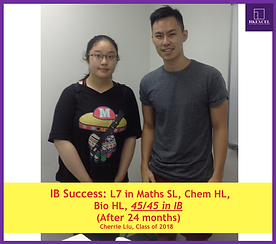 IB math student