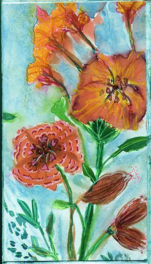 s-Orange blooms