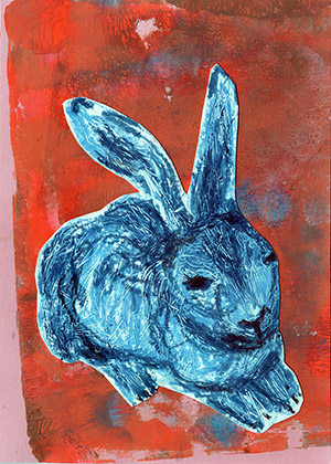 rabbit on orange