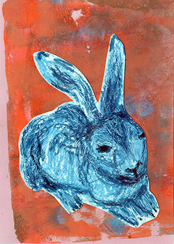 rabbit on orange