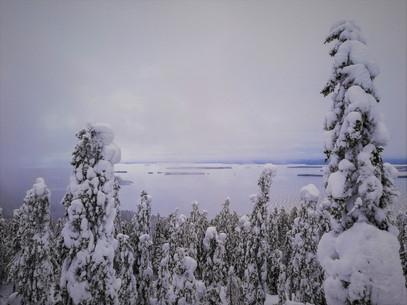 20180128-Winter_38 (2).jpg