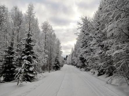 20180128-Winter_7.jpg
