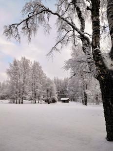 20180128-Winter_10.jpg